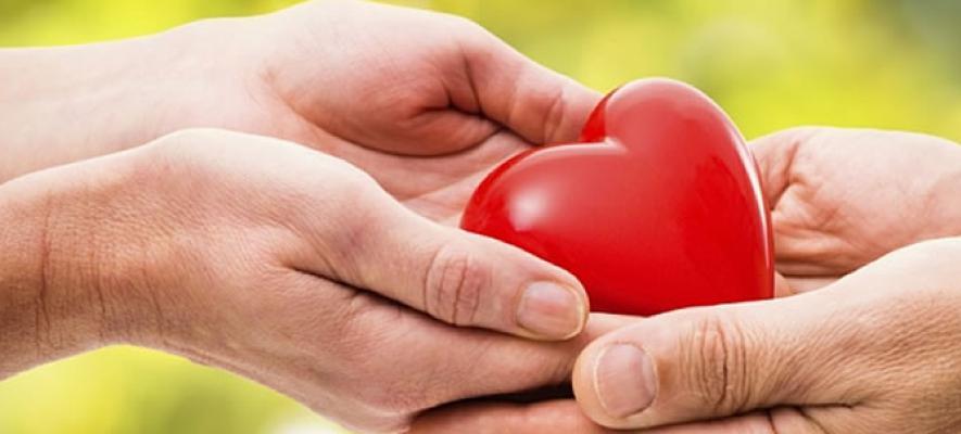 immagine metaforica rappresentante la donazione di organi